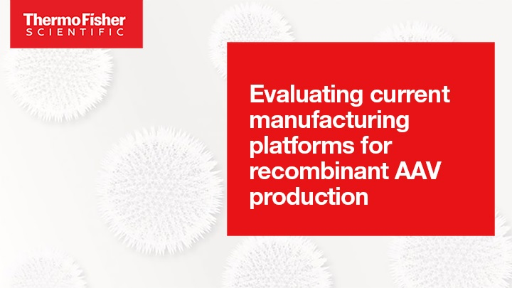 Evaluating current manufacturing platforms for recombinant AAV production